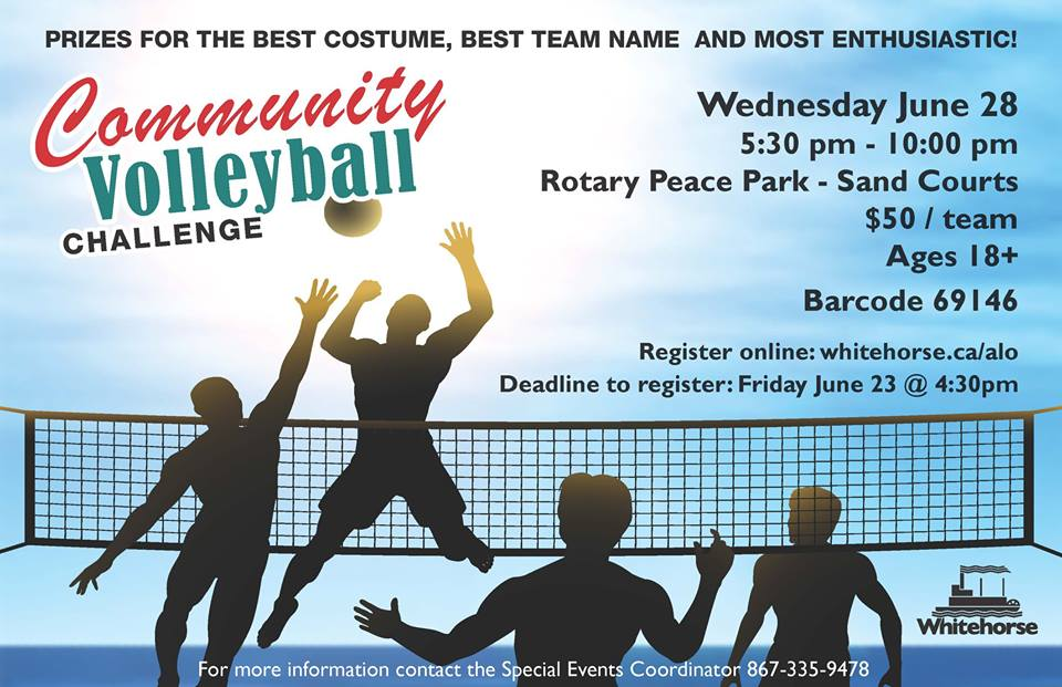 Volleyball Challenge 2017