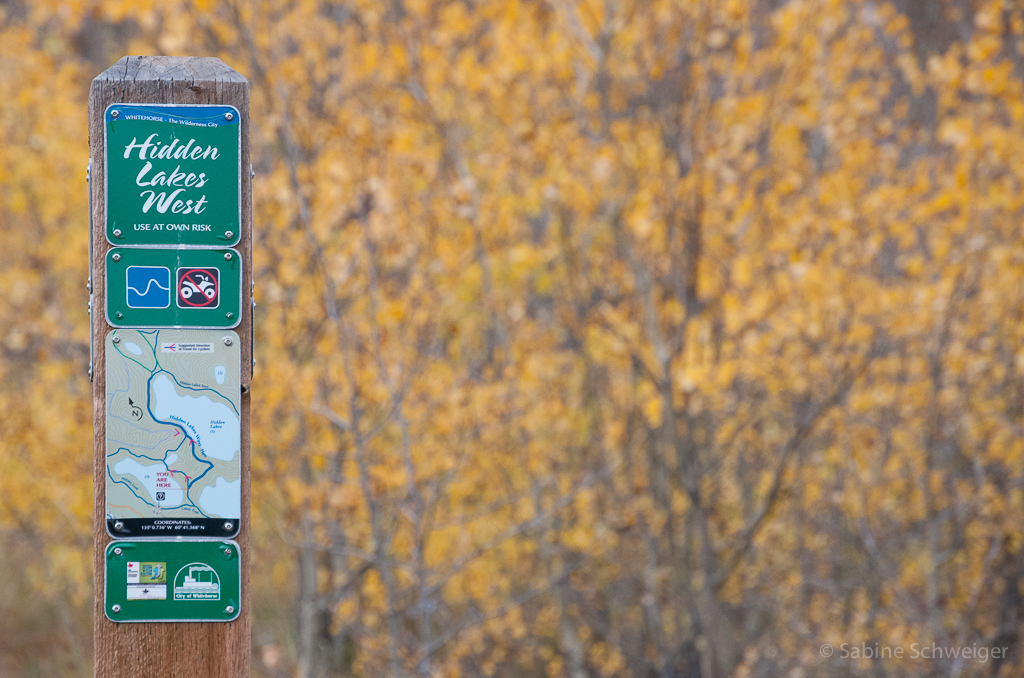 trail directional sign
